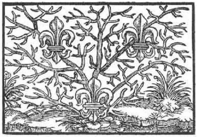 Xilografía de Paracelso 2
