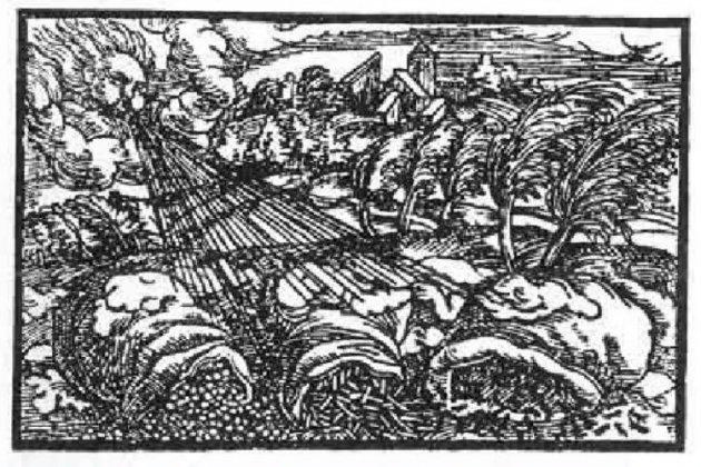 Xilografía de Paracelso 18