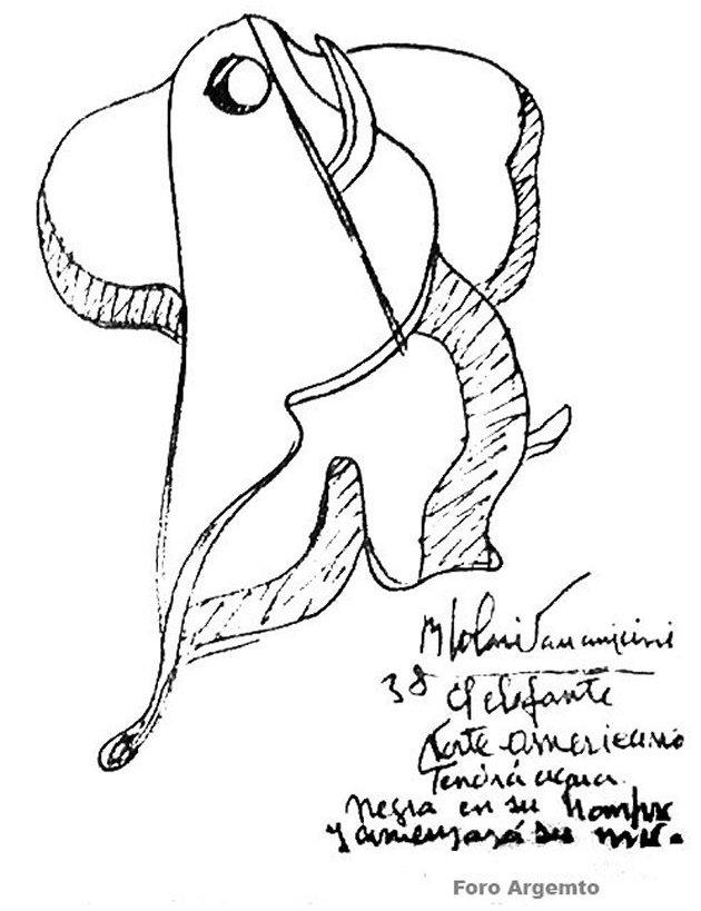 Solari Parravicini sobre elefante norteamericano