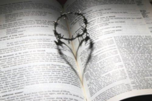 Credo de los Apostólicos